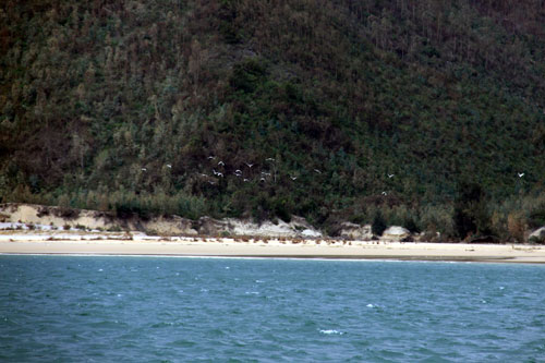 Đảo Bớc